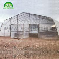 Buy cheap 2019 Agricultural hot galvanized steel pipe singe-tunnel greenhouse with plastic from wholesalers