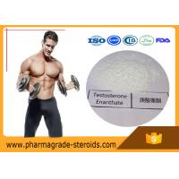 Wholesale Cycling Anabolic Testosterone Steroid Hormone Enanthate CAS 315-37-7 For Bodybuilding from china suppliers