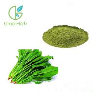 China Green Pure Natural Fruit Spinach Extract Powder With HPLC Test Method on sale