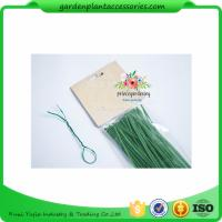 Wholesale Green Tree Climbing Garden Plant Ties , Plastic Tree Support Ties from china suppliers