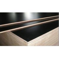 Wholesale XBR Film Faced Plywood/Construction Plywood/Phenolic Film Faced Plywood from china suppliers