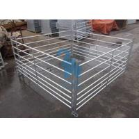 Wholesale Free Standing Livestock Metal Fence Panels , Goat Corral Panels With 6pcs Pole from china suppliers