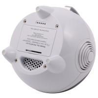 Wholesale Wireless Portable Bluetooth Speaker With FM Stereo Radio And Infrared Remote Control from china suppliers