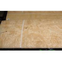Wholesale Yellow Ash Burl Wood Veneer For Furniture , 0.5 mm Thickness from china suppliers