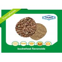 Wholesale Brown Yellow Fine Powder Natural Herbal Extracts Reduce Blood Sugar Buckwheat Seed Extract from china suppliers