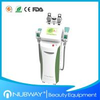 Wholesale cryolipolysis machine/Cryolipolysis slimming machine with optional lipo laser pads from china suppliers