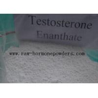 Quality Raw Bulking Cycle Steroids Testosterone Enanthate White Powder 315-37-7 for sale