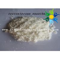 Wholesale Raw Test E Powder Testosterone Anabolic Steroid Testosterone Enanthate CAS 315-37-7 from china suppliers