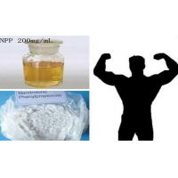 Wholesale Burning Fat Nandrolone Steroids / NPP Durabolin Nandrolone Phenylpropionate CAS 62-90-8 from china suppliers