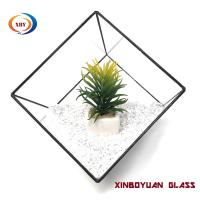 Wholesale Beautiful Geometric football shape glass vase succulent terrarium from china suppliers