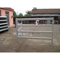 Wholesale cattle yard panels for sale@,design by australia ,hot dipped galvanized cattle yard fencing 2.1m x 1.6m from china suppliers