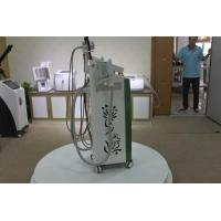 Wholesale Cryolipolysis fat freezing vacuum weight lose beauty machine for dermatologist with CE from china suppliers