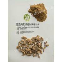 Wholesale Traditonal Chinese Medicine Extract, Codonopsis Pilosula Extract 10:1, ginseng-like, enhance immunity,  chronic fatigue from china suppliers