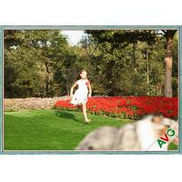 Wholesale UV Resistant PE Non - Infill Need Imitation Synthetic Lawn Grass For Dogs from china suppliers