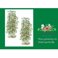 "Wholesale Heavy Duty Metal Square Tomato Cages With 8"" Square Openings from china suppliers"