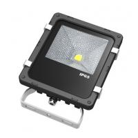 Wholesale Cold White Brightest Outdoor Led Flood Lights / 10Watt Light Emitting Diode 6000K from china suppliers