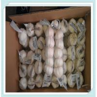 Wholesale 2015 new fresh white garlic export Wholesale China garlic,natural fresh garlic from china suppliers