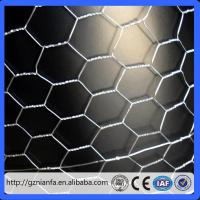 Wholesale Hot sale 1/2 inch chicken wire/Chicken hexagonal wire mesh/Guangzhou hexagonal mesh (Guangzhou Factory) from china suppliers