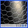 Buy cheap Hot sale 1/2 inch chicken wire/Chicken hexagonal wire mesh/Guangzhou hexagonal mesh (Guangzhou Factory) from wholesalers
