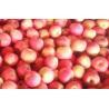 Buy cheap Fresh Fruit , Rich Nutritions Organic Fuji Apple For Human Health, no rust, Multi-fruit powder from wholesalers