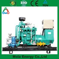 Wholesale 2014 New Design Green power Gasoline Generator from china suppliers