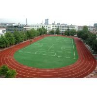 Wholesale Durable Premium Soccer Artificial Grass For University Soccer / Football Playground from china suppliers