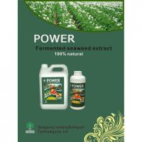 Fermented Seaweed Extract Organic Fertilizer