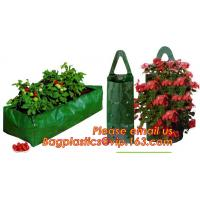 Wholesale Plastic Hanging Growing Strawberry Bags Planter ,Hanging Strawberry Planter Bags,Strawberry Planter from china suppliers