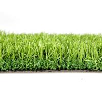 Wholesale Monofilament Pet Artificial Grass   from china suppliers