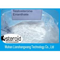 Wholesale Testosterone Anabolic Steroid Testosterone Enanthate White Powder 99.5% Purity CAS 315-37-7 for Bodybuilding​ from china suppliers