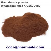Wholesale Safety Pharmaceutical Raw Material , Natural Ganoderma Lucidum Polysaccharides Steroid Raw Powder from china suppliers