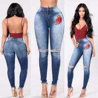 Embroidered Stretch Skinny Jeans Pants Blue Ripped Skinny Jeans