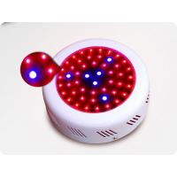 Wholesale 50w Mini High Power UFO Led Grow Light, Led Plant Growing Lights For Flowers from china suppliers