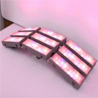 Buy cheap Led  grow horticulture light , agriculture light greenhouse light, high output led grow light  plant growth lights, from wholesalers