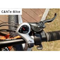 Quality Off Road Fat Tire Electric Bicycle , 25kph Speed Electric Fat Tyre Bike for sale