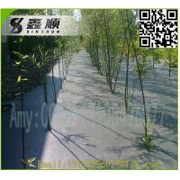 Quality 2016 High Quality black pp woven ground cover landscaping mats for sale