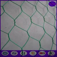 Wholesale Plastic coating chicken wire mesh / wire netting fence 20 gauge for landscape from china suppliers