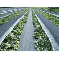 Geotextile Stabilization Fabric , PP Woven Geotextile Separation Fabric For Farm / Plants