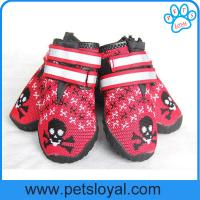 Wholesale Breathable Dog Shoes Soft Knitting Paw Protector with Reflective Velcro China Manufacturer from china suppliers