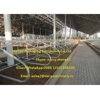 Wholesale Hot Dip Galvanizing Tie Free Stall Dairy Barns Cow Farm Equipment Parts from china suppliers