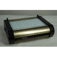 Wholesale Cidly 100 watt led grow light 3w led full spectrum changeable from china suppliers