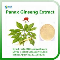 Buy cheap Panax ginseng Extract 80% Ginsenosides from wholesalers