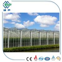 Wholesale 4mm Rectangular , Square greenhouse glass panels , toughened laminated glass from china suppliers