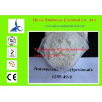 Wholesale 1255-49-8 Cutting Cycle Steroids Testosterone / Testosterone Phenylpropionate from china suppliers