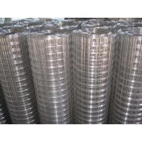 Wholesale ISO Factory Welded Wire Mesh/ galvanized wire mesh from china suppliers