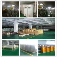 Guangdong New Vision Film Technology Co., Ltd