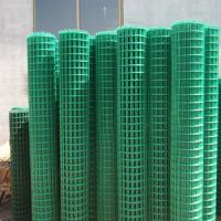 Galvanized Iron Welded Wire Mesh Roll or Panel