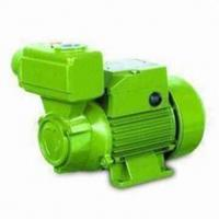 Wholesale Domestic Self Priming Water Pumps  0.75HP / 0.55KW  TPS -70 from china suppliers