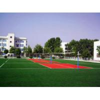 Wholesale Long Life PE Badminton Artificial Turf Sports for Garden Balcony, Roof Wall Decoration from china suppliers