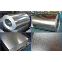 Quality Hot Dipped Galvalume Steel Coil / Sheet / Roll GI For Corrugated Roofing Sheet for sale